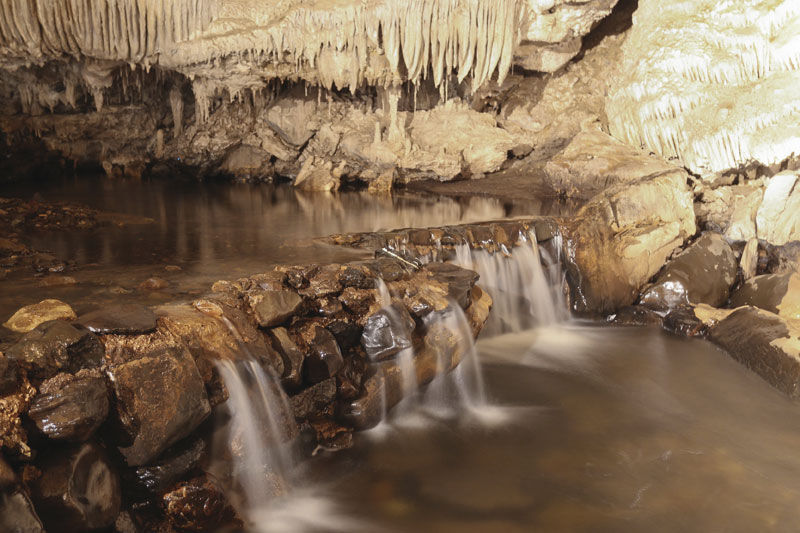 Mole Creek Cave Tours