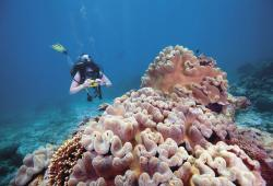 images/Tauchen/Dive-Advanced/TEQ-diving-800_X.jpg