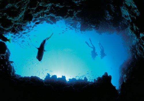 Highlights der Korallenküste